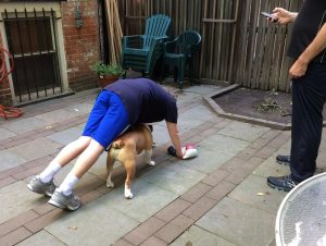 teen and his dog training